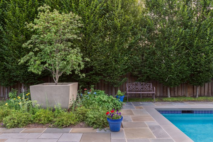 Shorb landscape design serving washington dc maryland for Pool design washington dc